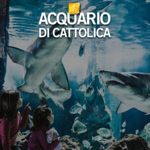 AcquarioCattolica