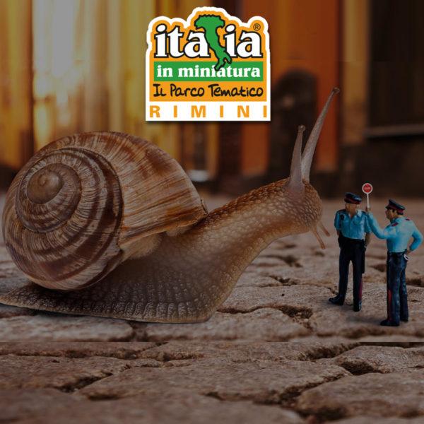 blocchi-ITA-Min18