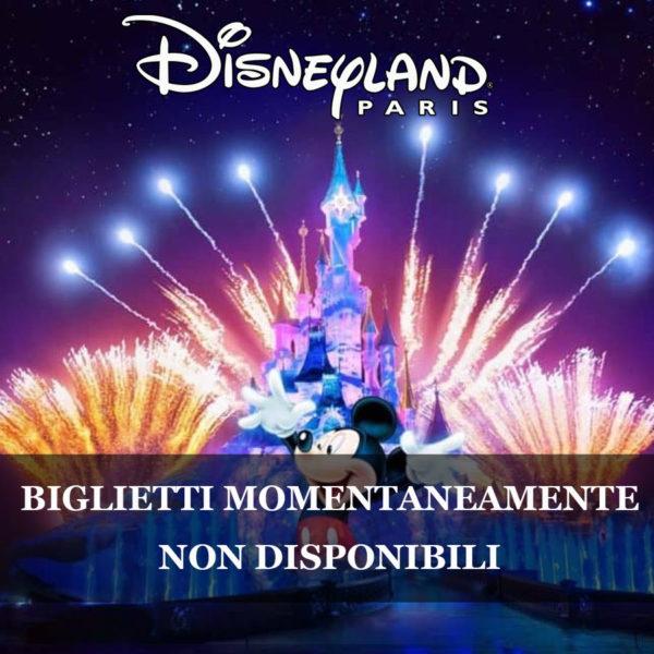 Disneyland non disponibile