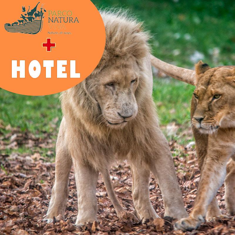 Natura Viva+hotel