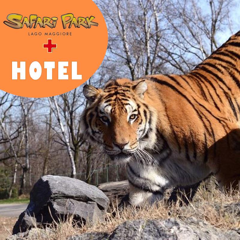 Safari Park+hotel