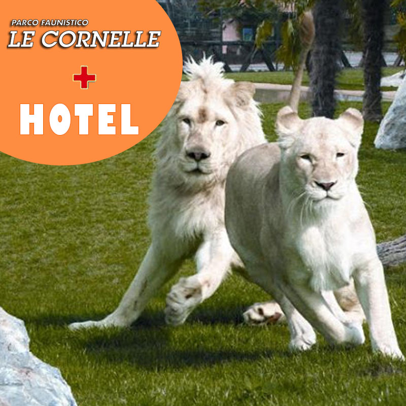 le cornelle+hotel