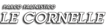 logo cornelle